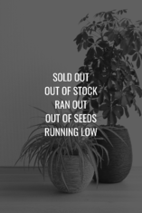 Sold Out Graphic