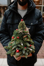 kaboompics_The man is holding a small Christmas tree with red decorations