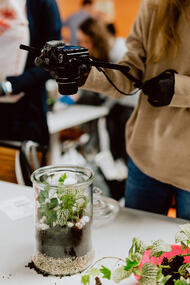 Woman taking a photo of terrarium with plants