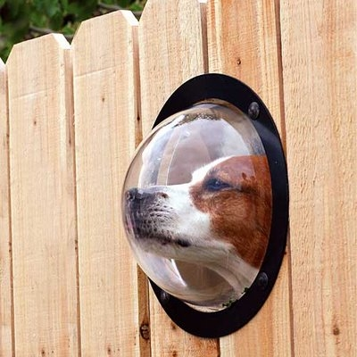 Pet peek fence insert