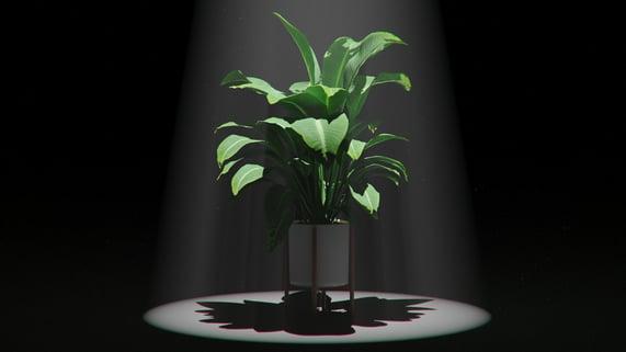 Volumetric Lighting in KeyShot: How to Create Light Rays