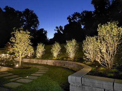 landscape lighting wall and trees