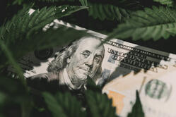 How cannabis business clients can minimize the tax impact of IRC Section 280E