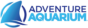 adventure-aquarium copy-1