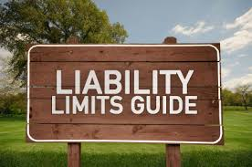 What Insurance Limits Does My Nonprofit Need?