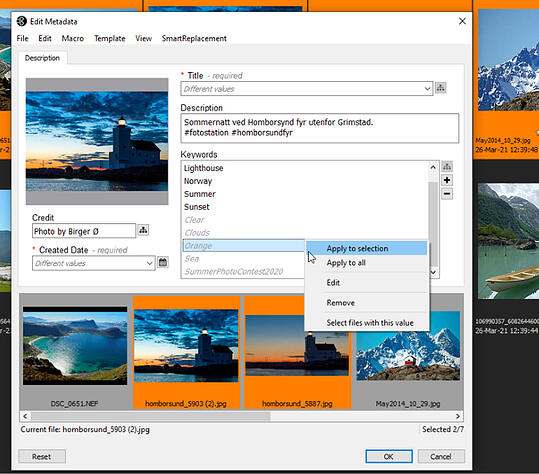 FotoStation Client grid showing new Metadata Editor