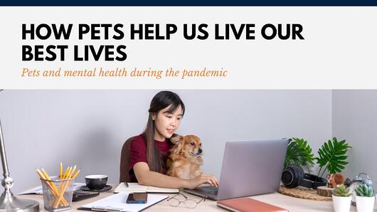 How Pets Help Us Live Our Best Lives During The Pandemic