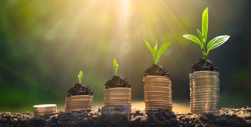 Own a Business? 3 Reasons 2020 is a Great Year To Review Your 401(k)