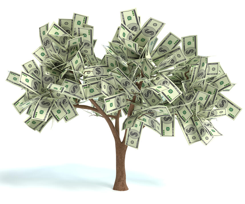 The Money Tree (and Other Basic Investing Principles)