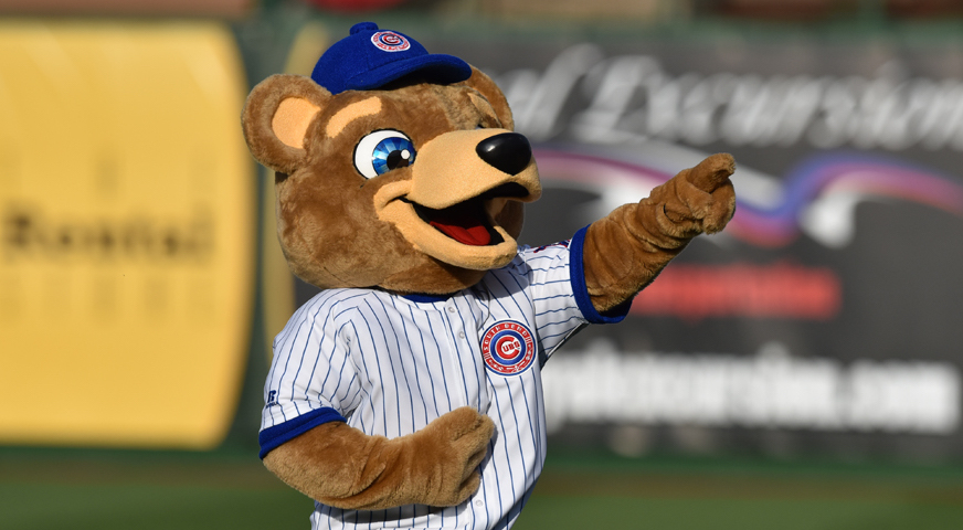 South Bend Cubs mascot Stu the Cub
