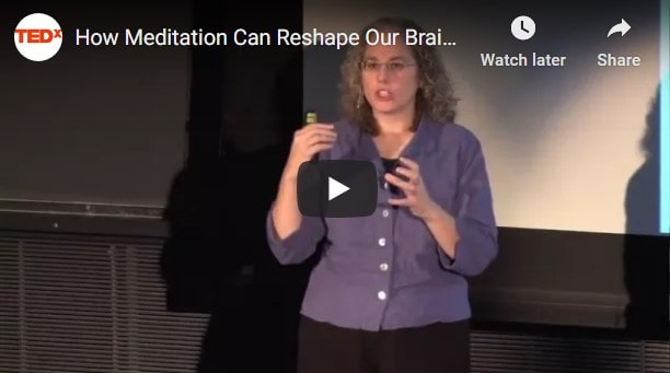 Ted talk on how meditation changes the brain