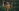 forest bathing young woman on a nature walk in forest in summer