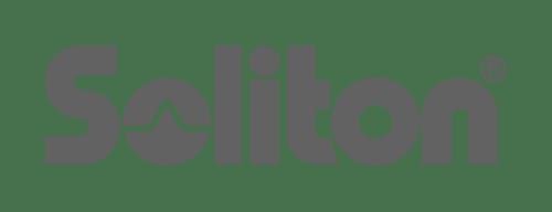 Soliton Systems K. K.
