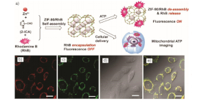 Application_nanoscale_MOF_Imaging_Agents_WEB