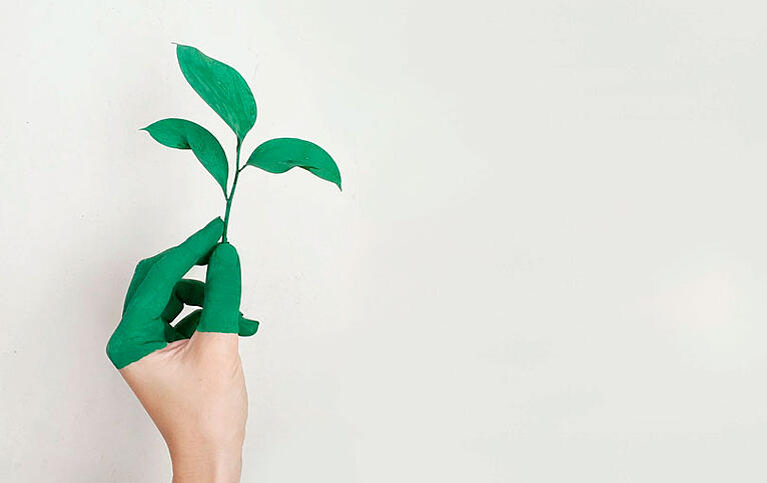 Todo lo que necesitas saber sobre el lead nurturing