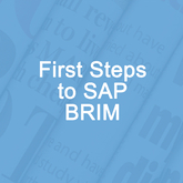 First Steps to SAP BRIM