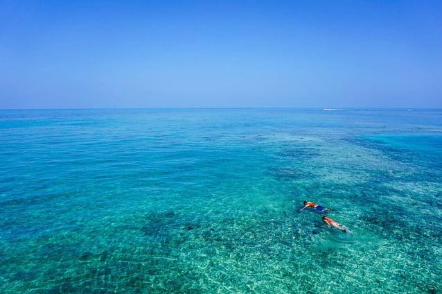 Tipps zum Teneriffa Schnorcheln am Abama Beach