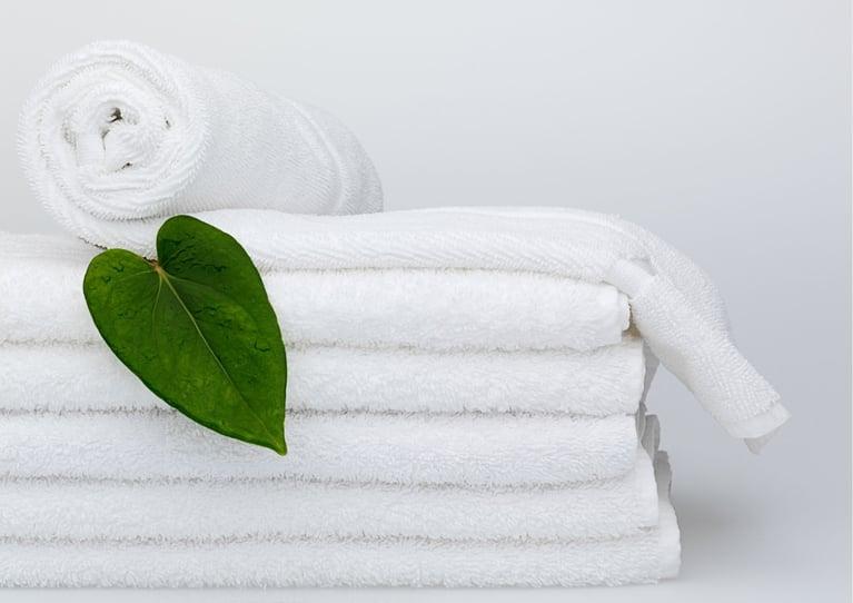 World Towel Day