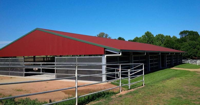 Equestrian shed basics: what you need to know