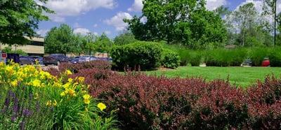 industrial complex landscape colorful plants