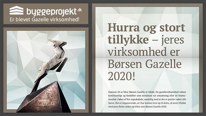 blog-byggeprojekt-gazelle-virksomhed2020
