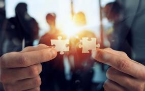 Ein Fall für Zwei: So gelingt die erfolgreiche Zusammenarbeit im Doppelsekretariat