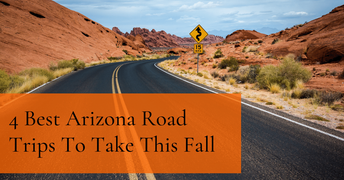 4 Best Arizona Road Trips To Take This Fall [2020]