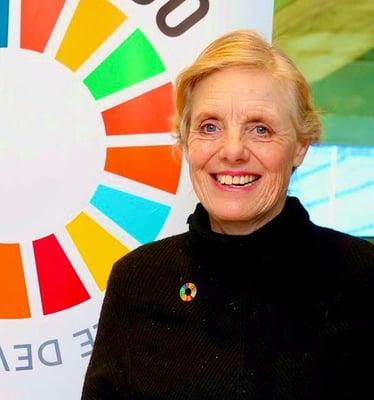 thumbnail_2. S. Franklyn SDGs pic (1)