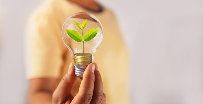 The importance of an innovation-friendly work culture