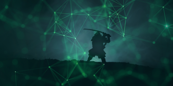 "Review of ""Crafting the Samurai Sword: A Framework for Advancing Your Data Strategy"""