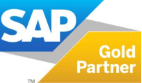 SAP Gold Partner México