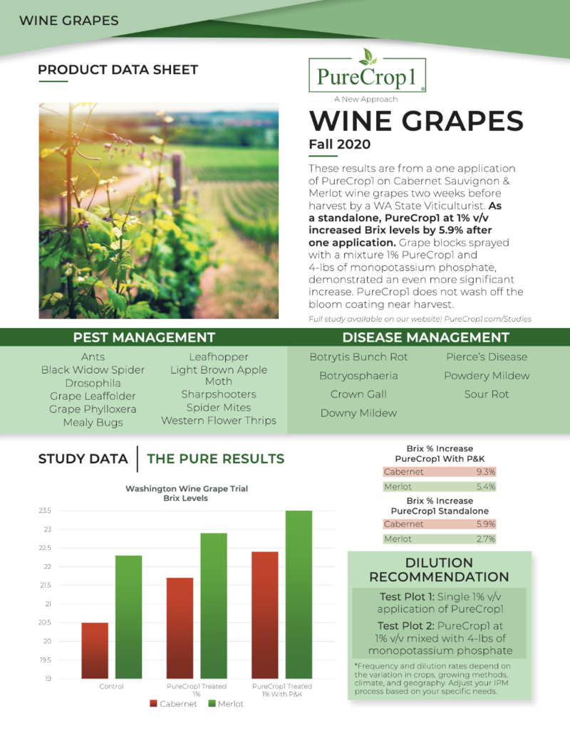 Wine data sheet