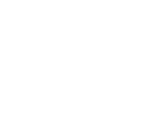 DDSFoundation_white