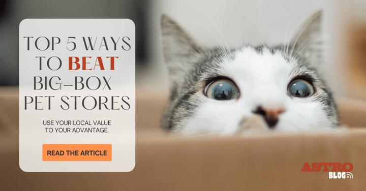 Top 5 Ways to BEAT Big-Box Pet Stores