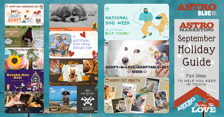 Pet Holiday Guide   September 2021