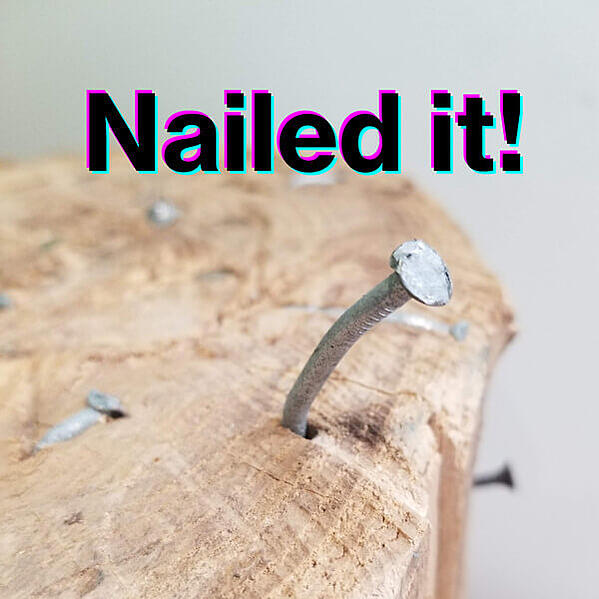 """A meme """"nailed it"""" showing a nail sticking out of a log."""