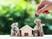 Cómo identificar una buena oportunidad de inversión inmobiliaria