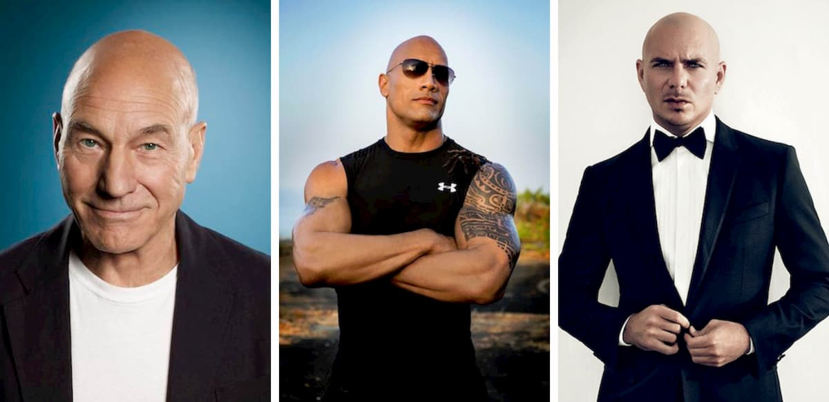 Patrick Stewart, The Rock and Pitbull