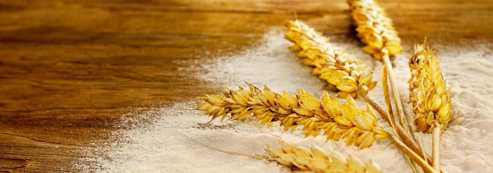 Flour Milling Sampling Solutions