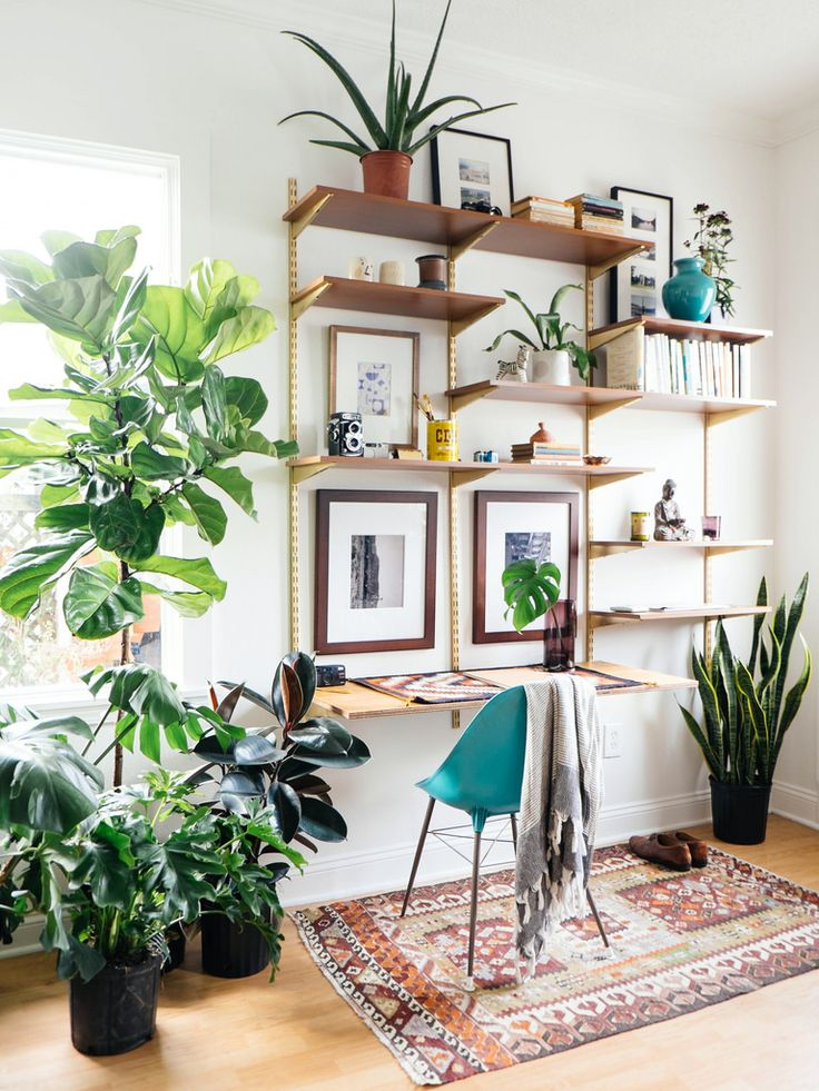 Office-space-with-unique-shelves-that-almost-mimic-trees